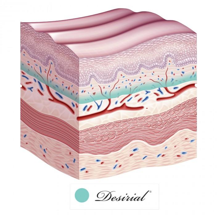Desirial 19 mg/ml de Ácido Hialurónico